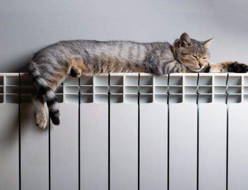 El sector de la calefacción goza de buena salud