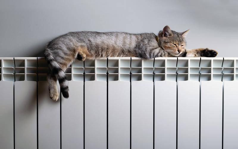 informe sector calefacción 2019